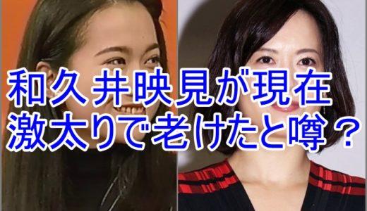 【画像】和久井映見が現在激太りで老けたと噂?若い頃のかわいい時と比較!