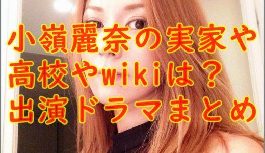 小嶺麗奈の実家や高校wikiは?現在までの出演ドラマまとめ!