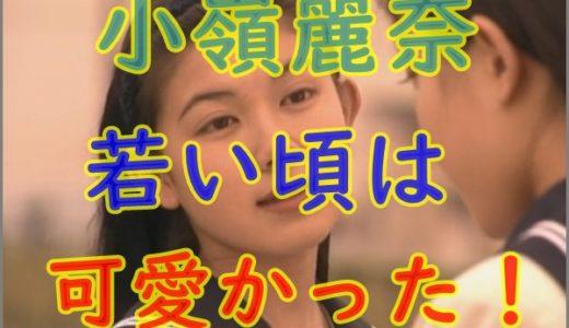 【画像】小嶺麗奈が劣化して老けたと話題に?若い頃は超かわいいかった!