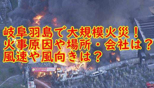 【動画速報】岐阜羽島で火災!火事原因や場所・会社は?風速や風向きは?