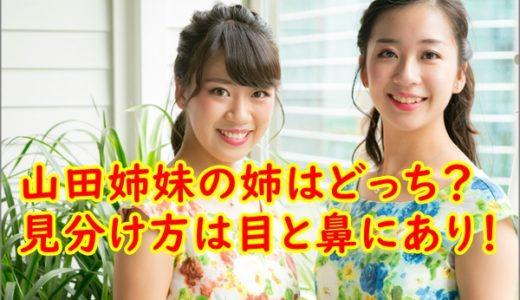 【画像】かわいい山田姉妹の姉はどっち?金八先生時代の動画も調査!