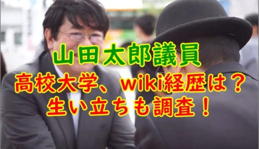 [顔画像]山田太郎議員の高校大学、wiki経歴は?生い立ちも調査!