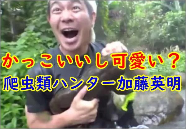 クレイジージャーニー 爬虫類