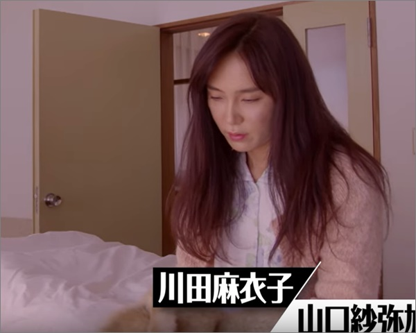 比較画像、山口紗弥加は若い頃より老けた。