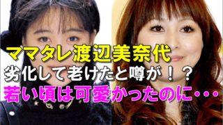 比較画像、渡辺美奈代は若い頃より劣化して老けた