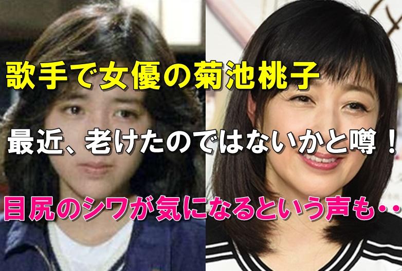 比較画像、菊池桃子は若い頃より劣化して老けた